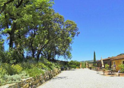 Agriturismo Monteverde -94