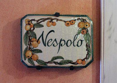 Agriturismo Monteverde appartement Nespolo-00