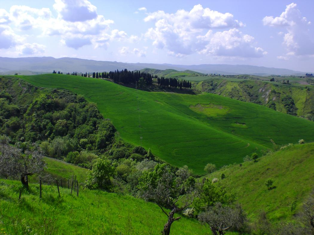 Agriturismo San Giacomo-113