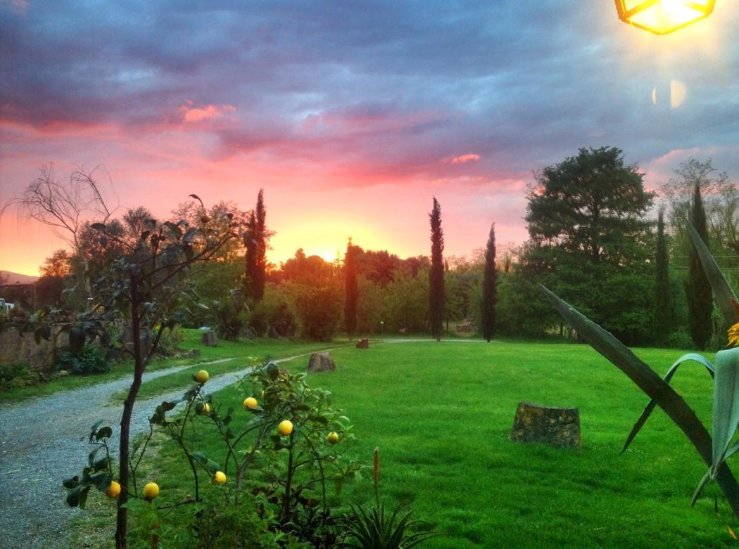 Agriturismo Lupinaio tuin en zwembad Toscaanse kust Casamia vakantie onder de italiaanse zon-01